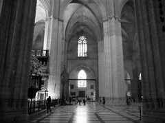 Sevilla Catedral (San Diego Shooter) Tags: church architecture sevilla spain europe cathedral religion gothiccathedral catedraldesevilla sevillecathedral sevillacatedral cathedralofsaintmaryofthesee juandecastillo insidesevillacatedral nathanrupertspain2014nobull nathanrupert2014spainwithbull