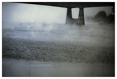 Mistige Maas . . . (willem_huwae) Tags: mist canon maastricht nevel bomen brug maas kennedy rivier willemhuwae 8852smal