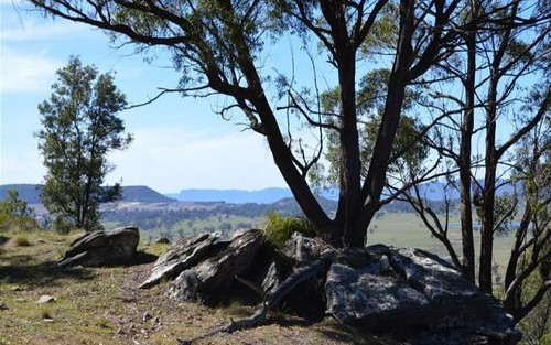 579 Cooper Drive, Clandulla NSW