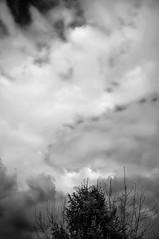 #28 (UBU ♛) Tags: blue blancoynegro water blackwhite noiretblanc blues bleu biancoenero bluacqua ©ubu unamusicaintesta blusolitudine landscapeinblues bluubu luciombreepiccolicristalli
