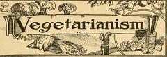 Anglų lietuvių žodynas. Žodis buckwheat cake reiškia grikių pyragas lietuviškai.