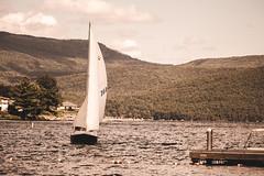 (64/365) Smooth Sailin' (Chexjc) Tags: park new york lake water sailboat docks canon project george memorial sailing smooth adirondacks adventure landing explore telephoto bolton boating 365 rogers stm sailin sagamore t4i 55250mm