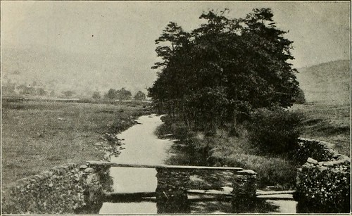 "Image from page 245 of ""Western field"" (1902)"