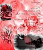 قصة قصيدة امرأة... (AMAZIGH2963) Tags: و في وردة على بيتا دودة حب قصيدة وقت حان هدية مني جميلة اسود صرت قز قد تراب قصة السماء بلاد وداعا إليك امرأة لقد شوك الحرير عذب الزهور يحميك فيكي حديقتي بماء سكنا بوردها غصنها تطرز بدهاء هدمك لأبني أطلالك لعروستي