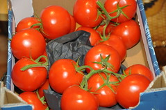 DSC_6470 Delicious D'vine Vine Ripe Tomatoes from Holland (photographer695) Tags: from holland price corporate for is box five tomatoes vine supermarket delicious only coop robbery per 32 turkish charging ripe reduced the dvine 199 180