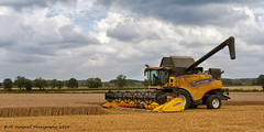Harvest Time (Jill Hempsall) Tags: wheat farming harvest crops combineharvester