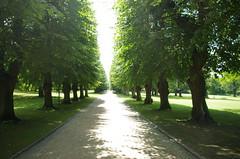 Søndermarken park (rotabaga) Tags: copenhagen denmark danmark københavn köpenhamn søndermarkenpark