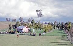 Bibbenluke - Cathcart Road, Bibbenluke NSW
