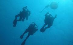 Οι βουτιές για νέες έρευνες στο ναυάγιο των Αντικυθήρων και σε live streaming