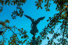 Angel (IlSottocapolo) Tags: canada monument statue architecture angel photoshop canon wings montréal quebec montreal québec canondslr lightroom 70d livemontreal canon70d