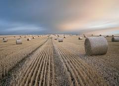 Harvest under a refinery sky (kenny barker) Tags: sunset storm scotland harvest grangemouth kennybarker
