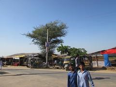 IMG_1191 (TwoCircles.net) Tags: fakir haryana faridabad madari qurbani qalandar