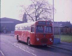 619AHA (21c101) Tags: 1969 1957 lichfield s15 midlandred bmmo 619aha