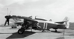 Charles Daniels Collection Photo North American P-51 Mustang (San Diego Air & Space Museum Archives) Tags: aircraft p51 northamericanmustang charlesdaniels