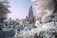 India_0171