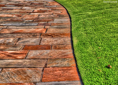 Texture - Along The Walkway [Explored] (zendt66) Tags: orange brown green texture grass stone photo nikon diptych trimmed assignment lawn sidewalk walkway weekly challenge hdr edged d90 photomatix zendt66 52weeks2014