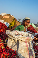 48901-014: Spice Value Chain Development in India (Asian Development Bank) Tags: india industry women farmers farmer agriculture karnataka gender ind privatesector raichur farmactivities