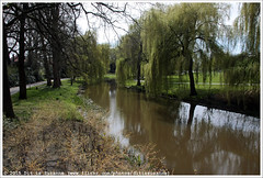 Lex en Edo Hornemannplantsoen (Dit is Suzanne) Tags: park netherlands spring walk nederland eindhoven lente wandeling noordbrabant northbrabant   treurwilg views100  img6787 canoneos40d  sigma18250mm13563hsm ditissuzanne  17042015 lexenedohornemannplantsoen