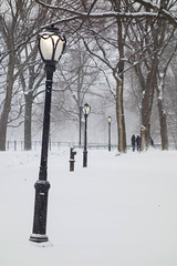 Wintry way (marktmcn) Tags: snow storm central park new york city nyc street lamps streetlamps lights lighting wintry way ahead people gathering under trees dsc rx100 lamp light