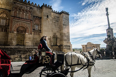 / cordoba / (aubreyrose) Tags: travel horse spain europe carriage cathedral catedral cordoba crdoba daytrip lamezquita