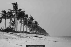 Beach (nazeee) Tags: 2007 atoll maale hulhumale raajje kaafu theraajjeproject