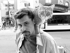 On Yonge Street .... His Feline Friend (Greg's Southern Ontario (catching Up Slowly)) Tags: street people urban toronto animal cat interesting nikon feline streetphotography streetscene unusual blackandwhitephotography torontostreetphotography nikoncoolpixp510