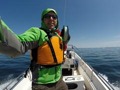 Towed KAP by Boat Around Lake Superior Ice Bergs (Invinci_bull) Tags: ice boat spring michigan iceberg kap kiteaerialphotography rabbitisland keweenaw keweenawbay keweenawpeninsula michigansupperpeninsula towedkap michiganskeweenawpeninsula wwkap2014