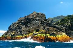 Rocky Shore - Lord Howe Island Circumnavigation (Black Diamond Images) Tags: island boat paradise australia nsw boattrip circumnavigation lordhoweisland rockyshore worldheritagearea thelastparadise circleislandboattour