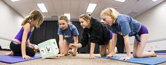2014 AGF Gymfest-1185 (Alberta Gymnastics) Tags: edmonton grant gymnastics agf recreational macewan gymnaestrada gymfest