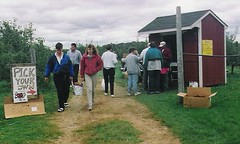 Pick Your Own- Brookfield Orchards, North Brookfield (Massachusetts Office of Travel & Tourism) Tags: autumn fall nature ma outdoors massachusetts orchard apples applepicking pickyourown northbrookfield brookfieldorchards