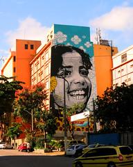 The World's Largest Stencil - Muralism by Izolag & Ananda Nahu - Rio de Janeiro 2014 (izolag) Tags: rio by de