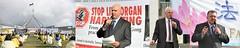 澳洲国会山集会 谴责中共活摘器官 Australia: Rally at Capital Hill Condemns Forced Organ Harvesting