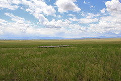 (Lonesome Traveler (J Haeske)) Tags: montana ulm buffalojump firstpeoplesbuffalojump ulmmontana