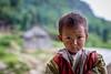 Sapa - Vietnam (Dónal Ó C) Tags: trek vietnam minority sapa hmong laocai hilltribe mongsen
