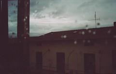 """""""La pioggia di vetro"""" (La T / Tiziana Nanni) Tags: 35mm 11 analogue due analogic pellicola analogico scannedfilm indefinito konikapop iamyou cronachealchemiche pagestizianananniphotography150081321701949 pagestizia"""