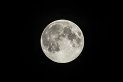 September Supermoon (Raven Photography by Jenna Goodwin) Tags: moon night sigma super september photograph how 2014 70300