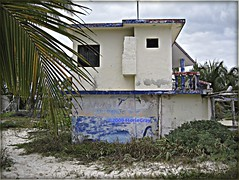 3255809287_65fb12c835_o (gray.florie) Tags: abandoned beach mexico yucatan caribbean allrightsreserved xpuha usewithoutpermissionisillegal 2009florencetomasulogray floriegrayfloriegrayflorencetomasulograytomasuloflorie tulumfloriegraycom