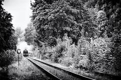 Steam engine CSD 464 (Ale87) Tags: train czech pentax zug retro steam wr lok dampf loko 18135 464 ckd