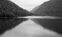 5990.Lake (Greg.photographie) Tags: blackandwhite bw lake film 50mm noiretblanc kodak lac 400 f2 barrage xtreme xenon schneider retina schneiderkreuznach id11 iiic ultrafine type021 xtreme400