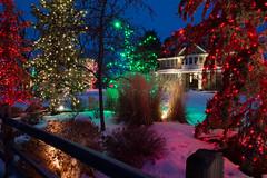 Variety of christmas lights (Christmas World) Tags: lighting christmas light house holiday snow tree led mo event incandescent slo c9 c7 christmaslitescom