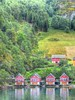 Flam Village houses (GillWilson) Tags: norway flam