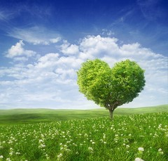 Tree in the shape of heart, valentines day background, ( (Salena )) Tags: wood blue wedding summer sky cloud sun holiday plant abstract flower tree green art love nature floral beautiful beauty field grass weather illustration garden season landscape outdoors happy leaf spring day heart natural bright symbol sweet farm background horizon decoration meadow valentine romance celebration card land romantic environment belarus shape idyllic