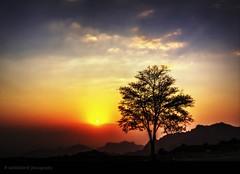 Before sunset (nabilelsherif) Tags: sunset sun tree art nature colors clouds canon one amazing colours sigma colourful myphoto byme nabil myshot ksa sigma1020mm taif mylens amazingshot 60d canon60d