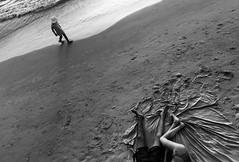 DSC_9657grey (ilanbenyehuda) Tags: white black flickr estrellas blackdiamond flickrunitedaward