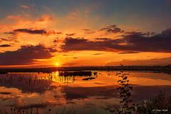 Himmelmoor - 09091303 (Klaus Kehrls) Tags: wonderful sonnenuntergang natur himmel wolken moore landschaft deen schleswigholstein gewsser qiuickborn