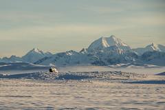 Mount Cook/Aoraki (Ian@NZFlickr) Tags: new morning winter snow sunrise mt country cook canterbury mount zealand mackenzie nz highest aoraki mountaing