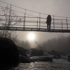 Trekker - Hiker (naturum) Tags: 2016 autumn bridge bro brug dimma fall fog hängbro hangbrug herfst hiker höst kungsleden lapland lappland mist norrbotten sapmi sápmi september siellajohka šiellajohka sol sun suspensionbridge sverige sweden trekker vandrare zon zweden björkliden