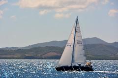 Sailing (Carlos A. Aviles) Tags: 20172912lascasitasvillageconsquistador sailboat velero bote boat sea sky blue mar cielo azul fajardo puertorico
