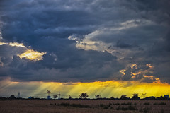 yellow. (angsthase.) Tags: light sunset sky field skyline clouds germany landscape deutschland weeds cityscape himmel wolken powerlines nrw florian ruhrgebiet dortmund cloudporn 2012 ruhrpott mft micro43 olympuspenepl1 olympusm45mmf18