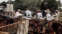 De gaúchos e cavalos.... (mauroheinrich) Tags: costumes brasil nikon cavalos nikkor 18200 nikondigital gauchos ctg riograndedosul cultura pampa mtg tradicionalismo gaucho rodeio gaúcho tradição gaúchos gauchismo tradições peões nikonians 18200vr ibirubá querência nikonprofessional d300s 9ªrt nikonword mauroheinrich